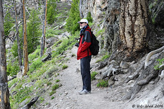 On the trail to the Mystic Falls Overlook (V. C. Wald) Tags: yellowstonenationalpark uppergeyserbasin biscuitbasin mysticfalls mysticfallsoverlook