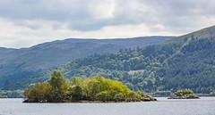 190 - Loch Lomond (md93) Tags: park trees water island 360 national lochlomond westhighlandway sallochy