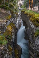Maligne Canyon (EXPLORED 07/16/2016) (FollowingNature) Tags: jaspernationalpark alberta canada malignecanyon followingnature jasper waterfalls canyon canadianrockies banfftouristspots banffphotospots banffphotolocations banffphotos jasperphotos inexplore