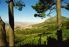Cape Town South Africa Table Mountain Panorama March 4 1999 169 (photographer695) Tags: africa panorama mountain table town south capetown dec cape 1998