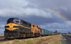 C501 and L277 sit in Pimpinio Loop to cross AM8 and PM5 (bukk05) Tags: railroad grain railway turbo vr cclass lclass wimmera graincorp elzorro c501 victorianrailway srhc railpage grainflow l277 pimpinio rpauviccclass rpauviccclassc501 railpage:class=21 railpage:loco=c501 australianlocolease westernstandardgaugeline railpage:sighting=601