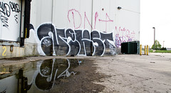 Nekst (TheHarshTruthOfTheCameraEye) Tags: up 30 graffiti detroit dirty kings vandalism msk mad dts bomber society pcf d30 throw throwup nekst madsocietykings dirty30 throwie detroitgraffiti