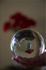 A Different Point of View (Jill Clardy) Tags: wood red roses ball cherry globe crystal sphere refraction vase inverted console day135 day135365 3652013 365the2013edition 15may13 4b4a7592