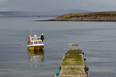 The Sheila C (JanuaryJoe) Tags: scotland orkney scapa orkneyislands flotta