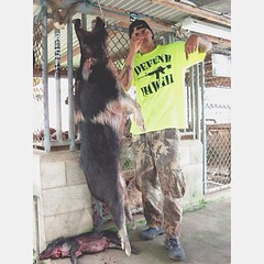 "One more down for HANAPA'A HOUNDZ ! #defendhawaii #hanpaahoundz #hawaiian #hunting #hawaii • <a style=""font-size:0.8em;"" href=""http://www.flickr.com/photos/89357024@N05/8742691336/"" target=""_blank"">View on Flickr</a>"