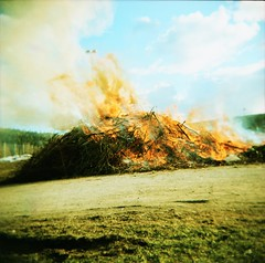 Bonfire 1 (AnalogNiklas) Tags: holga xpro lomography crossprocess bonfire 52rolls