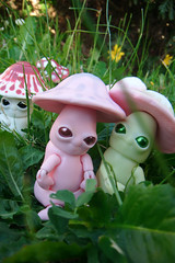 Mick-Oze the mushroom: Cute crew (The Maman Panda) Tags: pet cute mushroom doll artist bjd tendres chimeres