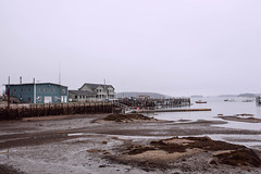 Low tide in the morning (jar ()) Tags: maine stonington