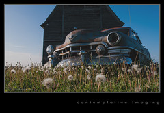 dandellac (contemplative imaging) Tags: auto county old usa west art cars field car barn digital rural america landscape lumix photography countryside photo illinois spring corn automobile midwest warm day image photos farm fine may rusty images cadillac il dandelion panasonic clear ill american crib imaging hd friday 169 caddy dandelions rochelle 16x9 midwestern ogle 2013 carscape torcwori dmcgh1 contemplativeimaging ronzack lumgh1 olymz1442v1 20130524 citrav20130524gh1 citrav20130524gh1232 dandellac
