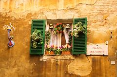 Siena Window (bostondave34) Tags: travel flowers italy window tuscany siena