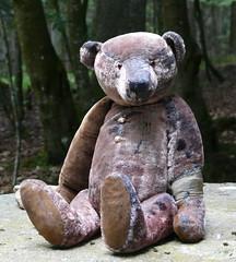 Blassenbuchhtte Schwarzwald (fastrotefrau) Tags: bear germany pattern teddy mohair teddybear oberhausen selbstgemacht teddybr handarbeit artistbear schnittmuster knstlerbr