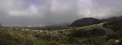 Sobre el Valle de Güimar (letrucas) Tags: españa cielo tenerife islascanarias nubosidad isladetenerife valledegüimar laderasdegorgo chivisay vertientesurdetenerife amapolasdecaliforniaeschscholziacalifornica