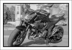Streetfighter (Eirik0304) Tags: blackandwhite bw film monochrome norway zeiss norge hc110 exa fornebu tessar dilutionb classicblackwhite classicblackandwhite polypanf ©edrussellroberts bwfp