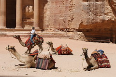 Petra (Jordania) (El Asri Luca) Tags: caballos petra jordan ruinas desierto monasterio tesoro historia rocas jordania camellos beduinos nabateos