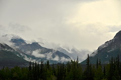 On Road, AK ( going to Mantanuska Glacier) (faungg's photos) Tags: trip travel vacation usa mountain car weather fog alaska clouds landscape us scenery traffic cloudy foggy ak   onroad  scenicdrive     alaskasglennhighway