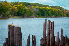 the east bank (jimmy_racoon) Tags: park autumn fall minnesota river mississippi is waterfall state wetlands mississippiriver ft 70200 snelling f4l ftsnellingstatepark 70200f4lis canonxsi