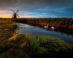 Herringfleet Dawn [Explored] (jellyfire) Tags: sky storm water windmill clouds sunrise canon reflections landscape dawn suffolk day unitedkingdom swans fens emotive atmospheric eastanglia broads windpump canonef1740mmf4l herringfleet 1740mmf4lusm vision:night=0711