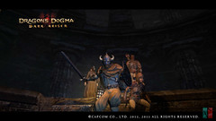 Dragons_Dogma_Dark_Arisen_VP (vigaplay) Tags: dogma dargons