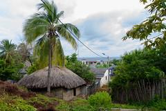 Desde la Loma (alejocock) Tags: ocean costa port puerto coast mar agua colombia bolivar playa caribe puertolimon islafuerte