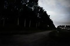 notte#4... carichi di escrescenze colorate, ma siamo ciechi... (UBU ♛) Tags: blues dreams notte blunotte 25secondi blupolvere ©ubu blutristezza unamusicaintesta landscapeinblues bluubu