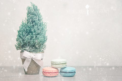 Hope Santa likes Macaroons! (Serena178) Tags: christmas food tree dessert sweet pastel stack macaroon layer slider treat odc odc2 slidersunday