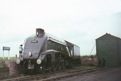 Semi Retirement. (Kingfisher 24) Tags: scotland fife a4 60009 unionofsouthafrica halina35x lochtyprivaterailway