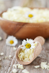 Camomile salt (Oxana Denezhkina) Tags: sea flower nature beauty yellow bathroom shower wooden spring soap bath natural body background salt lifestyle objects nobody bowl resort exotic health massage salon products therapy chic care relaxation aromatic spa healthcare luxury scrub hygiene cosmetic aroma treatment aromatherapy camomile oxeyedaisy