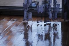 Sonbahardan kalmalar (platformaforizma) Tags: old autumn shadow cloud sun green bird window nature rain canon vintage book leaf colorful view natural dry drop retro ethnic grape sonbahar silluette
