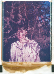 The sound of the clearing (LukeOlsen) Tags: usa oregon portland polaroid branches sauvieisland instantphotography 669 polaroid669 peelapartfilm lukeolsen
