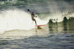 Catching a wave. (artanglerPD) Tags: sea waves wind surfer paddle windsurfing spraysun