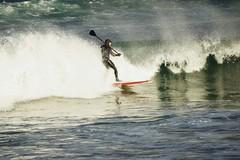 Catching a wave. (artanglerPD) Tags: sea waves wind surfer paddle windsurfing spraysun