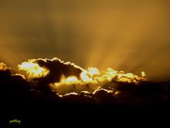 Sunset (pat.bluey) Tags: warilla newsouthwales australia sunset 1001nights g 1001nightsmagiccity weatherphotography sunrays5