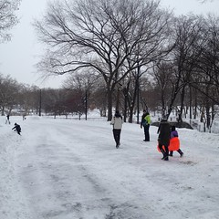 Children Heading to Sled in Central Park, Storm late January. (oinonio) Tags: nyc centralpark manhattan snowstorm juno blizzard1501