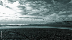 Playa Yenehue (*paz) Tags: