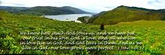 "1 John. ""We know that God loves us."" (Praise Photography) Tags: balsamroot tommccallpreserve columbiariverrowena 1john416pictureimage"