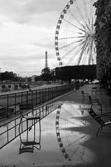 Paris, Jardin des Tuileries (Ewa Sokol) Tags: bw white black paris reflection monochrome nikon noir jardin des tuileries et extrieur blanc d7000