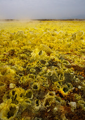 The colorful volcanic landscape of dallol in the danakil depression, Afar region, Dallol, Ethiopia (Eric Lafforgue) Tags: africa travel lake color tourism nature pool beauty vertical landscape outdoors volcano spring colorful solitude day desert natural earth acid horizon surreal nobody nopeople formation serenity heat minerals environment sulphur isolation geography geology ethiopia hotspring volcanic saline geothermal interest arid ecosystem hornofafrica afar eastafrica geological abyssinia afarregion dallol danakildepression ethio161938