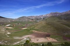 La Piana si prepara per la fioritura (Ale*66*) Tags: italy landscape paesaggio umbria piana castelluccio sibillini