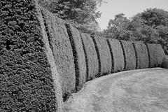 landmark (masande) Tags: summer gardens bush topiary geometry lawn maryland carve edge ladew curve