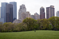 One Man, One Park (Joe Josephs: 2,650,890 views - thank you) Tags: nyc newyorkcity newyork landscapes centralpark photojournalism centralparknewyork urbanlandscapes travelphotography landscapephotography cityparks urbanparks copyrightjoejosephsphotography