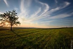 St.Georgen, Attersee/ Austria (Wieland77) Tags: longexposure sunset sky clouds austria sterreich nikon sonnenuntergang wolken 1020mm lightroom bulbexposure langzeitbelichtung attersee attergau longexposurephotography nikonlove nd1000 sigmanikon sigma102035 nikond7200 lightroom6