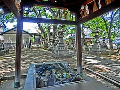 Kamisumuchi-jinja, Sumiyoshi, Osaka (jtabn99) Tags: green japan shrine   nippon osaka  jinja nihon sumiyoshi rooftile   20160502 kamisumuchijinja