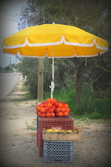Roadside Mini Market (lol) (Deida 1) Tags: road lemons oranges algarve roadside fruitstand