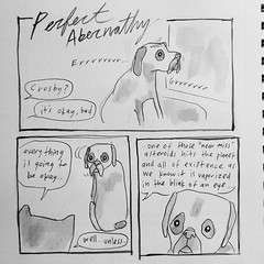 it's okay (starheadboy) Tags: crosby boxer dog puppy webcomic perfectabernathy