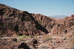 5R6K2508 (ATeshima) Tags: arizona nature havasu