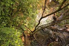 Rio Quente 12 (deltafrut) Tags: brasil gois caldasnovas pousadadorioquente rioquenteresorts