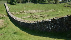 Hadrians Wall East of Housesteads Fort (Vercovicium), near Haltwistle, Northumberland, England, UK, 6/2016 (SteveT0191) Tags: uk england flickr roman northumberland hadrian romanempire hadrianswall housesteads geolocated