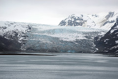 John Hopkins Glacier_Glacier Bay_Alaska_DSC_5063_4_D (renrut01) Tags: cruise blue sea usa ice water alaska bay glacier johnhopkins