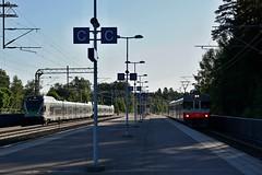 DSC04327 (Jani Jrviluoto) Tags: hl sm5 sm2 mkkyl sm26073