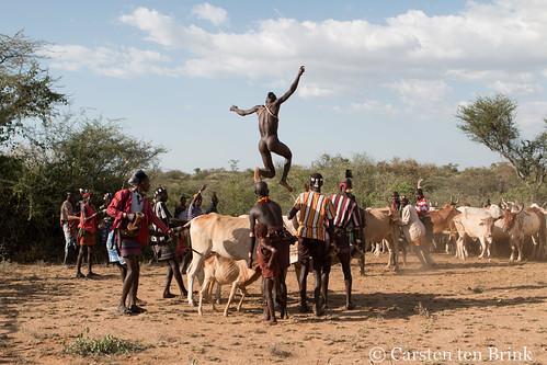 At the bull-jumping rite